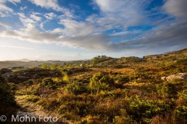 Desolate Landscape Sotra Norway #2