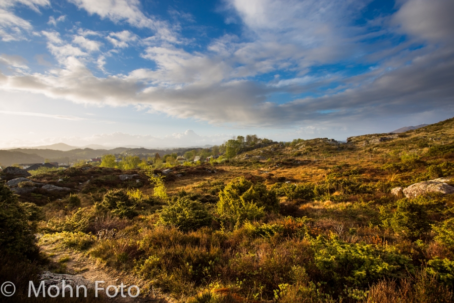 Desolate Landscape Sotra   Norway #2