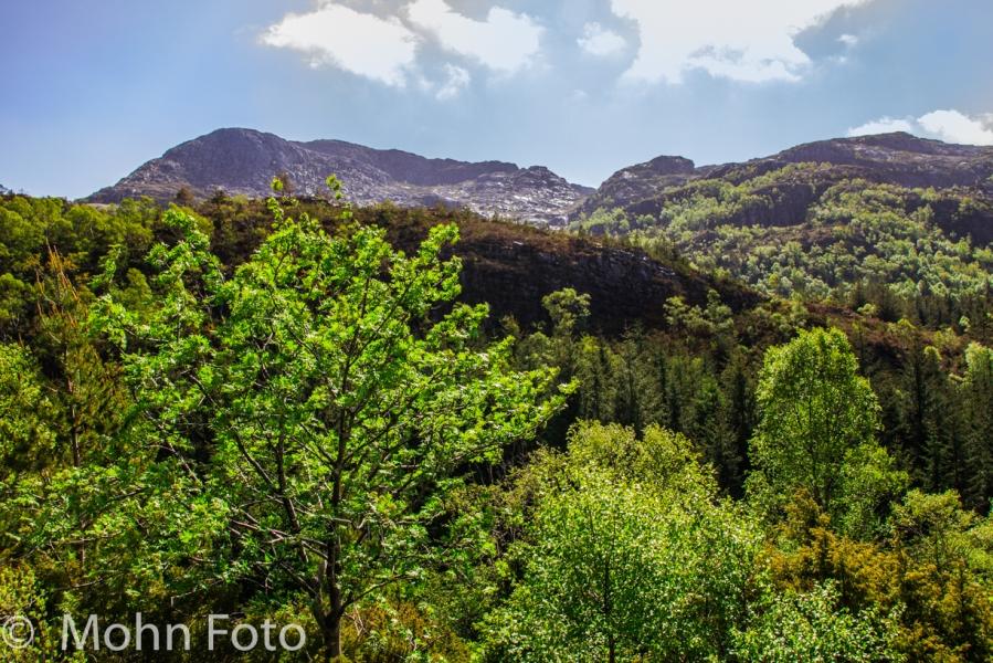 Landscape Liatoppen Sotra