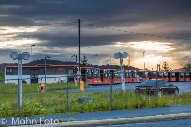 Busses ready for morning customers
