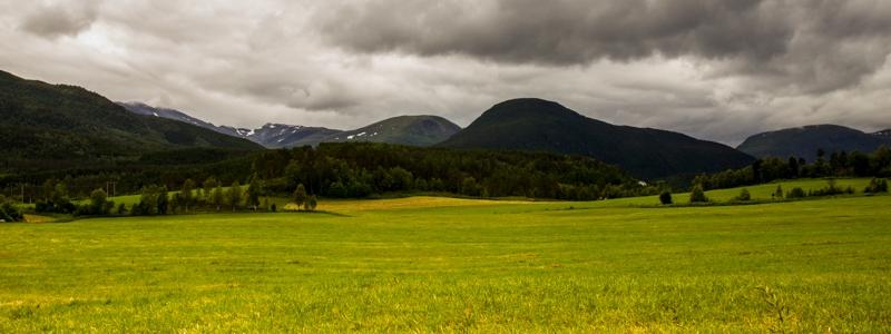 Mountains&Grass