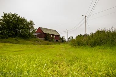 Meadow&Barn