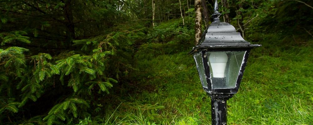 Narnia Feel