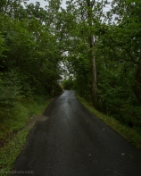 Photo of a road