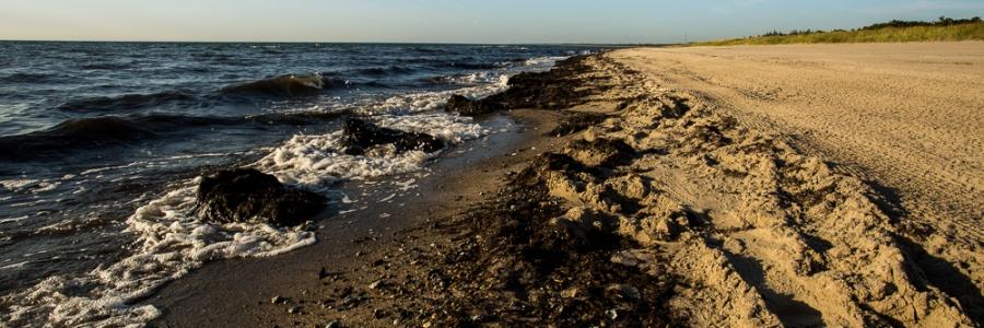 MarieLyst Beach Denmark