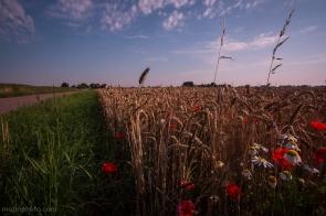 Flower&Grain