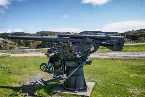 Artillery Fjell Festning