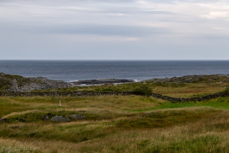 Grass & Sea
