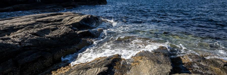 Bølgeskyll