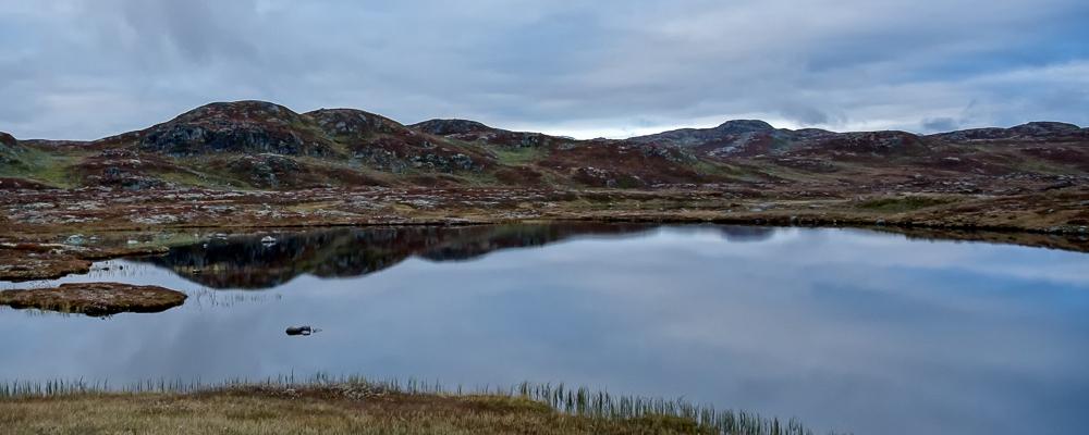 Hardangervidden Norway