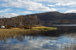 Reflections & Boats