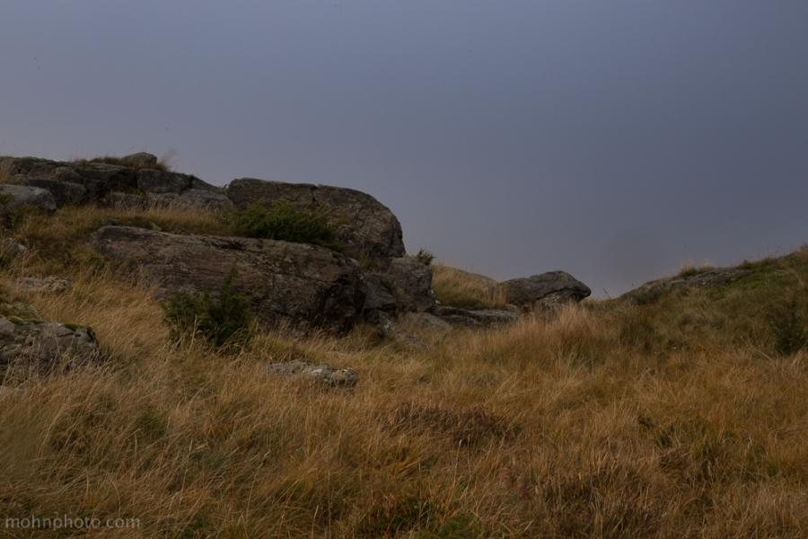 Stone & Grass
