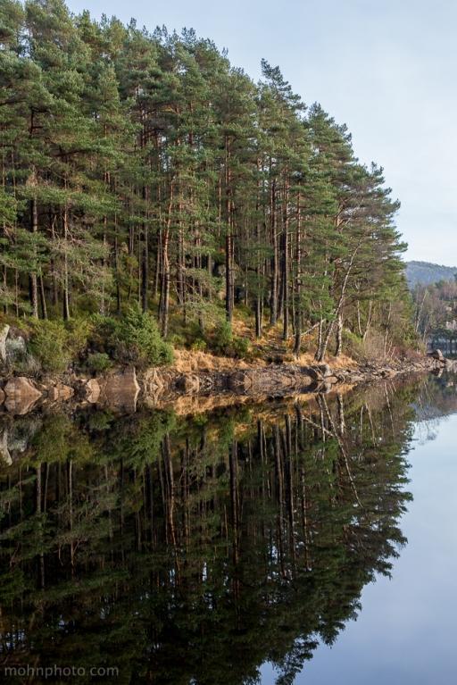 Alvøen-Pines-Reflections