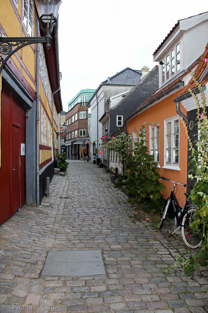 Town Denmark